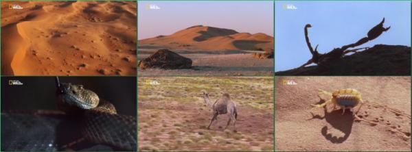 Пустыни / Dеsеrts (2016)