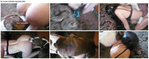 72568b35d41480259d64df002f3a1a26 - Bestiality Animal Porn Videos - Free Download ZooSex