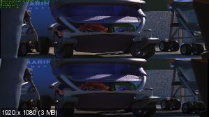 В поисках Дори 3D / Finding Dory 3D ( by Ash61) Вертикальная анаморфная стереопара