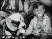 Украденные драгоценности / The Stolen Jools (1931)